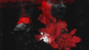 LEFKI SYMPHONIA -'' Dakri / Tear''